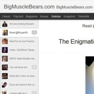 BigMuscleBears Blog
