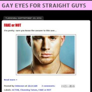 GAY EYES FOR STRAIGHT GUYS